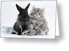 Kitten And Rabbit Getting Into Tinsel Greeting Card