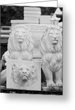 3 Lions Greeting Card
