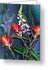 Lupin And Indian Paintbrush Greeting Card