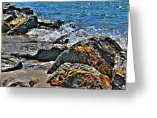 3 Of Mother Natures Finest  Textures Greeting Card