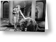 Silent Film Still: Animal Greeting Card