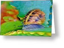 Snail On Aloe Vera Greeting Card