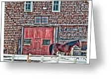 Stoudwater Delight Greeting Card