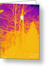 Thermogram Of Electrical Wires Greeting Card by Ted Kinsman