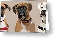 Three Boxers Greeting Card