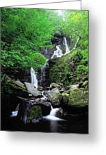 Torc Waterfall, Killarney, Co Kerry Greeting Card