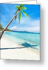Tropical Beach Malcapuya Greeting Card