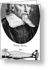William Harvey, English Physician Greeting Card