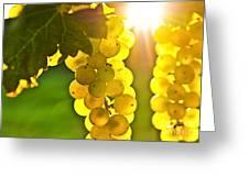 Yellow Grapes Greeting Card