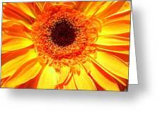 3840c Greeting Card