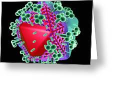 Aids Virus Particle, Computer Artwork Greeting Card