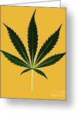 Cannabis Sativa, Marijuana Leaf Greeting Card