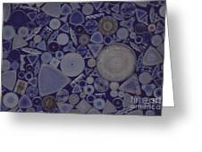 Diatoms Greeting Card by M. I. Walker