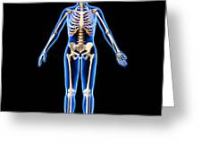 Female Skeleton, Artwork Greeting Card
