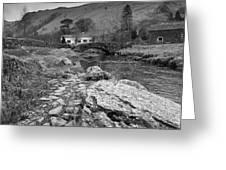 Fern Bridge Greeting Card