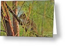 4- Incognito Greeting Card