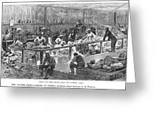 Kansas: Black Exodus, 1879 Greeting Card