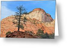 Landscape Zion National Park Greeting Card