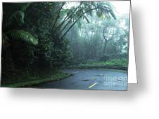 Misty Rainforest El Yunque Greeting Card