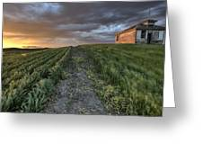 Newly Planted Crop Greeting Card