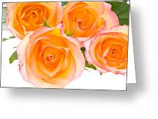 4 Roses Over White Greeting Card