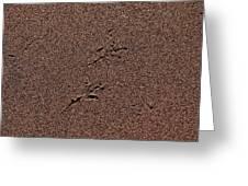 Sandmaps Greeting Card