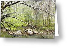 Spring Snow Along Williams River Greeting Card
