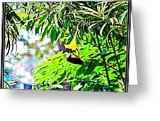 Story Of A Small Bird Greeting Card