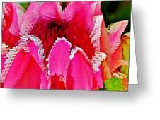 Protea Blossom Greeting Card