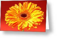 4183-001 Greeting Card