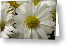A Bouquet Of Chrysanthemums Greeting Card
