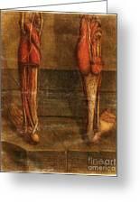 Anatomie Generale Des Visceres Greeting Card