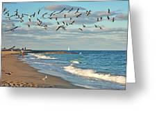 5- Singer Island 8x 10 Greeting Card