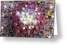 Spiny Sunstar Greeting Card