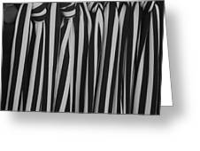 5 Ties In Black And White Greeting Card