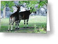 Two Stripes Greeting Card