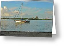 51- Phil Foster Park-singer Island Greeting Card