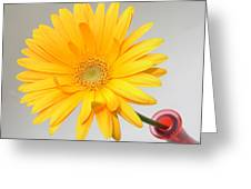 5171.2 Greeting Card