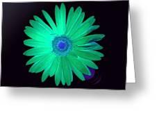 5419c4-002 Greeting Card