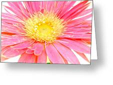 5436c1-004 Greeting Card