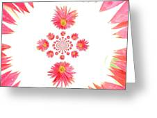 5466pn1 Greeting Card