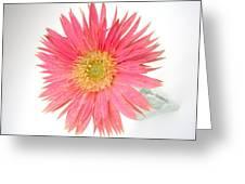 5487c1 Greeting Card