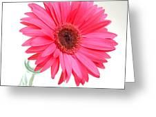 5524c1-001 Greeting Card