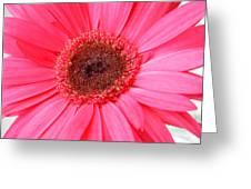 5540 Greeting Card