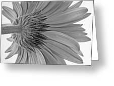 5574.2.1 Greeting Card
