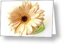 5732c1 Greeting Card
