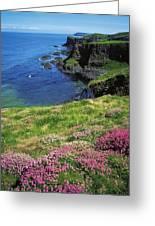 Dunluce Castle, Co Antrim, Ireland Greeting Card