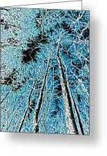 Forest Art Greeting Card