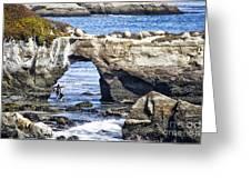 615 Det Rocky Bridge Greeting Card