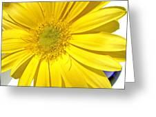 6391c Greeting Card